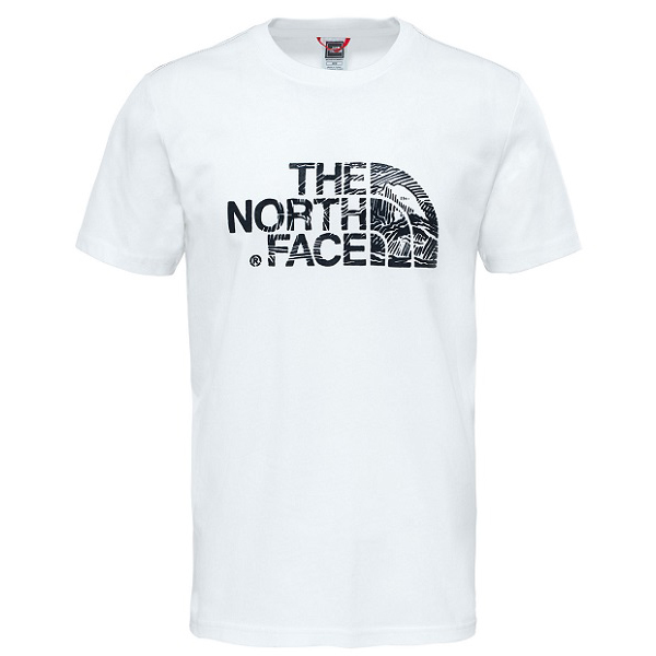 Футболка мужская The North Face Wood dome